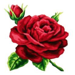 Κέντημα Σταμπωτό με το Τριαντάφυλλο Κομπλέ Κιτ