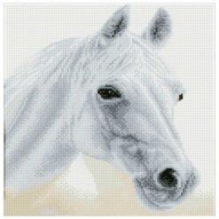 Πίνακας με Ψηφίδες Diamond Dotz Άλογο Αραβίας