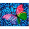 Πίνακας με Ψηφίδες Diamond Dotz Complete Κιτ Flutter by Pink