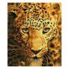 Πίνακας με Ψηφίδες Diamond Dotz Complete Κιτ Jaguar Prowl
