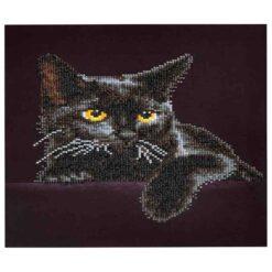 Πίνακας με Ψηφίδες Diamond Dotz Complete Κιτ Midnight Cat