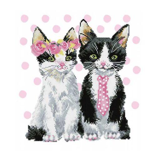 Πίνακας με Ψηφίδες Diamond Dotz Complete Κιτ Mr. and Mrs. Pink