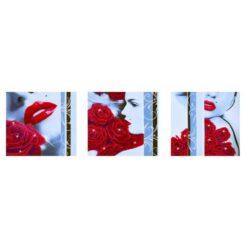 Πίνακας με Ψηφίδες Diamond Dotz Complete Κιτ Rose Romance